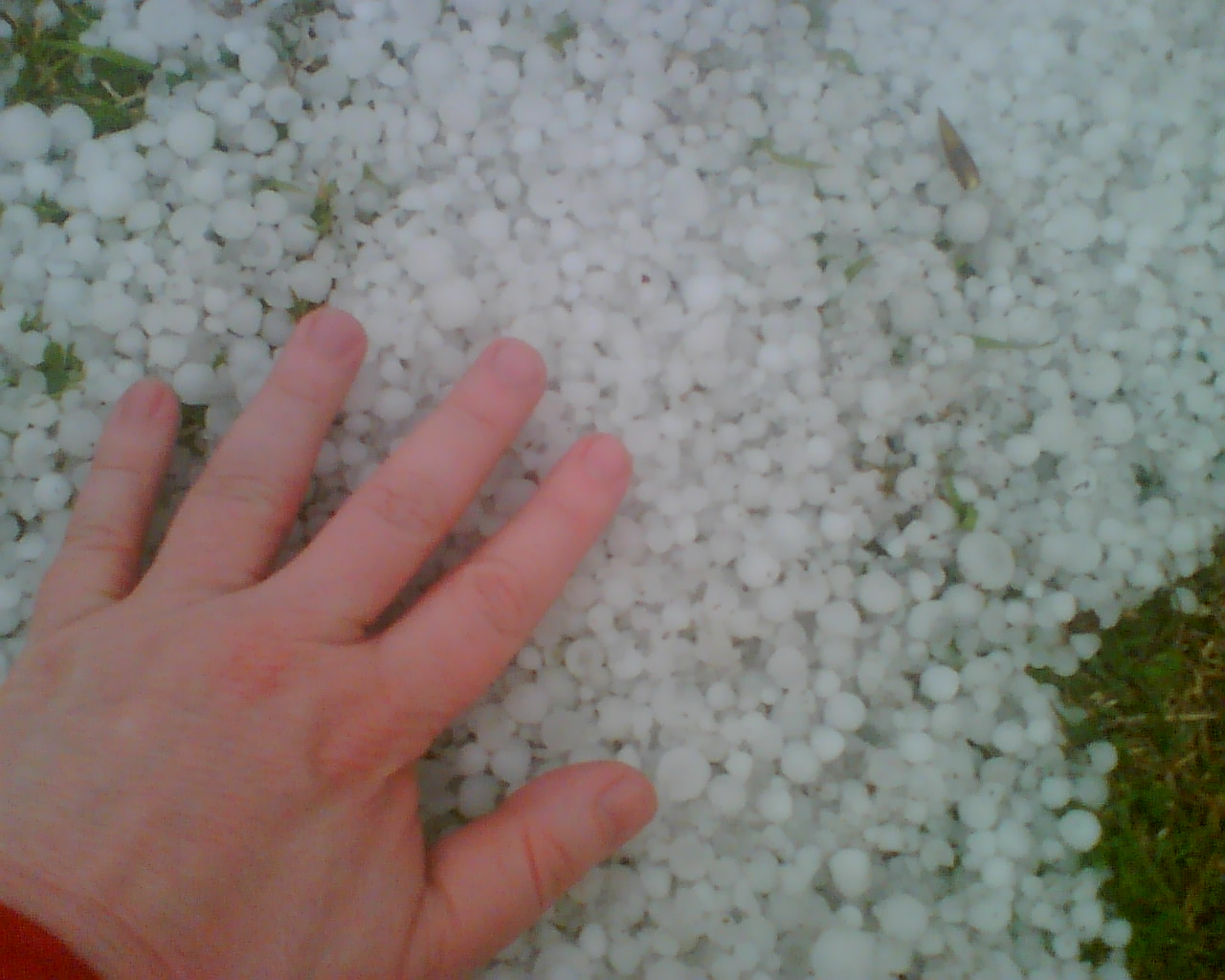 Hail Storm in Nickson Street, Surry Hills