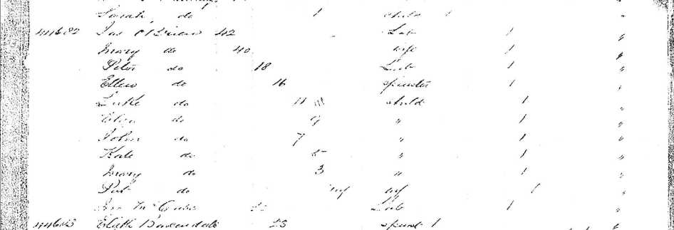 Great Victoria Shipping Records #2