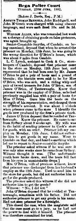 The Bega Gazette and Eden District or Southern Coast Advertiser (NSW : 1865 - 1899), Saturday 24 June 1882, page 2