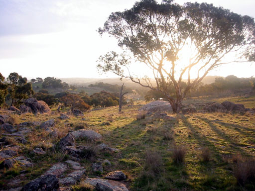 Property near Wagga Wagga, formerly owned by Chris Jones