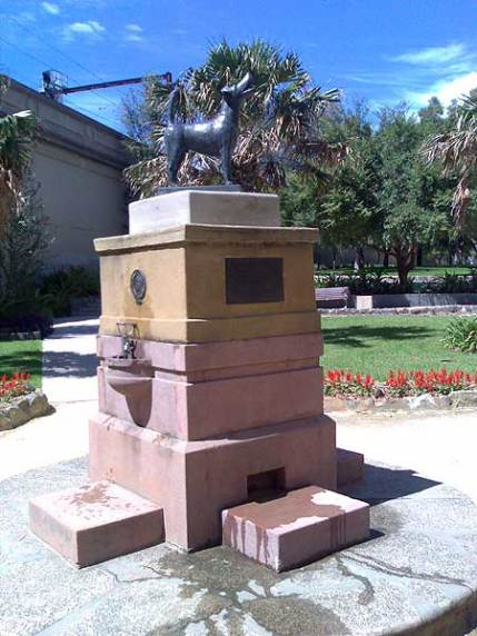 One of the fountains at North Sydney constructed so that as humans could take a sip of water, their dogs were able to lap up the over-flow. The dog on the top of the fountain was only placed there this year.