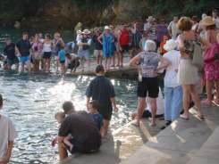 Darwin has quite a few tourist attractions, the most unusual attraction possibly being Aquascene.