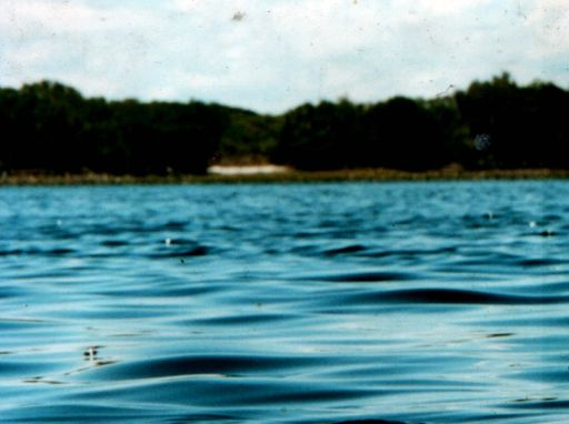 Lennox Head - one of the great secrets is Lake Ainsworth. The lake is surrounded by ti-tree, giving the water a dark colour. We used to call it the coke lake as a child, as the colour of the water resembles coca cola. Itś great to go for a swim in the ocean and then to chill out at Lake Ainsoworth. Total secret - dont tell anyone!
