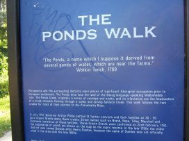 The Ponds, a name which I suppose it derived from several ponds of water, which are near the farms, according to Watkin Tench 1789.
