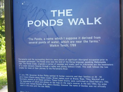 The Ponds Walk