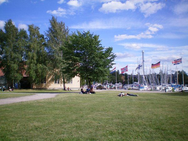 Swedish summertime in the park