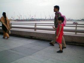 The Cranes of Singapore