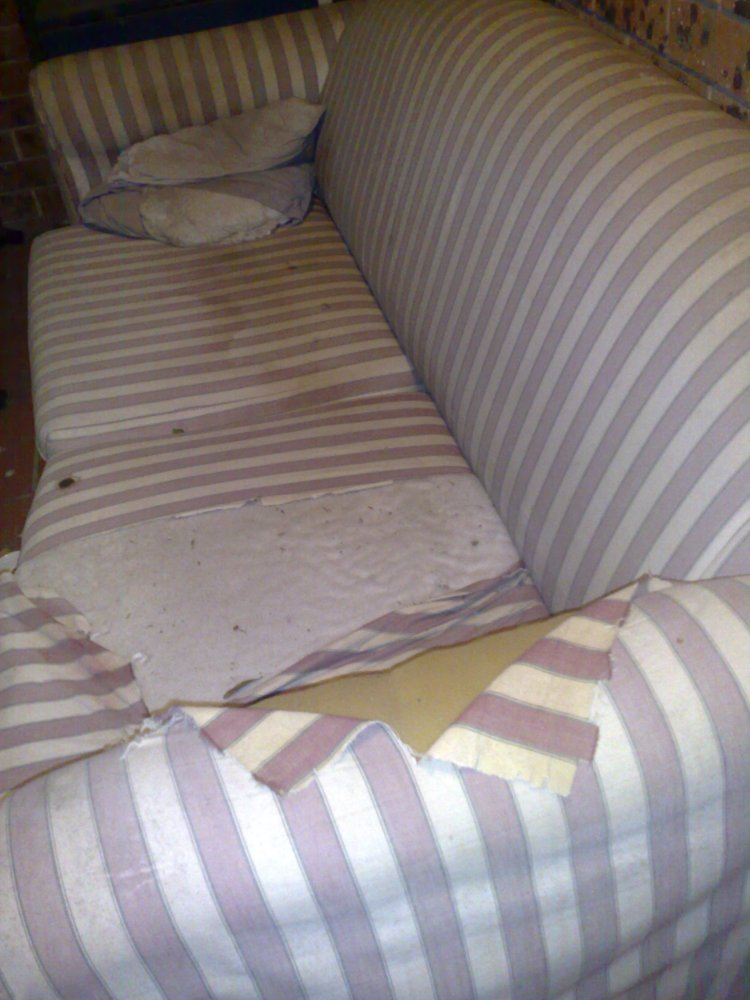 Messy Old Couch