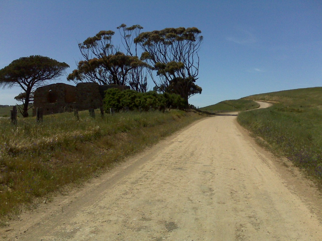Dirt road on the way to Myponga Beach