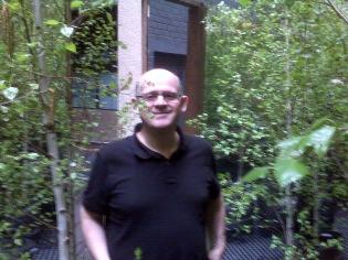 Inside the Silver Birch Forrest in Laneways