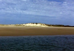 The Coorong