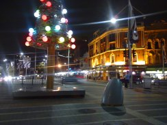 Taylor Square Christmas Tree