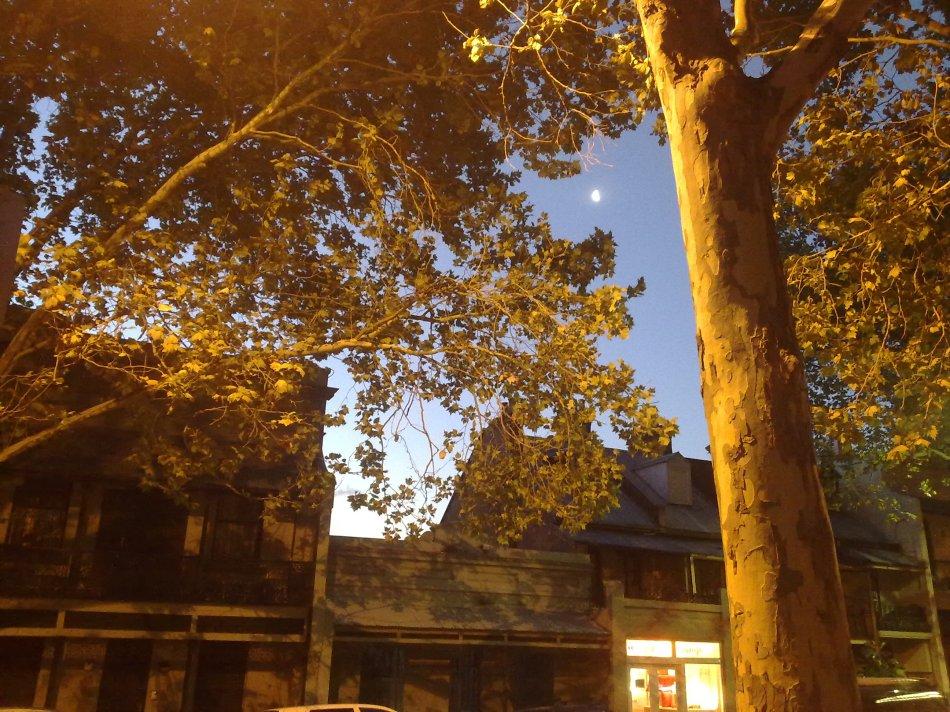 Riley Street Sky