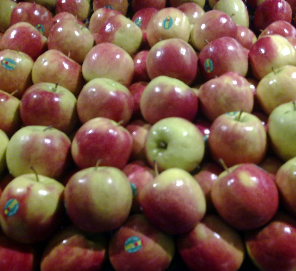 Apples at Thomas Dux in Surry Hills