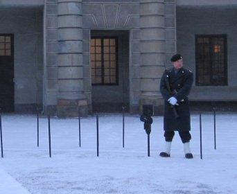 Freezing cold guard on duty at Royal Palace