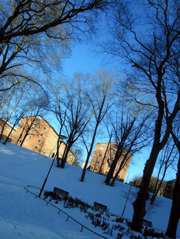 Snow behind the Clarion Hotel, Skanstull