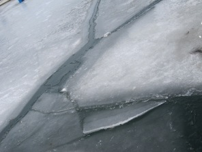 Last remaining ice in the harbour