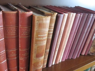 Books on the library shelf
