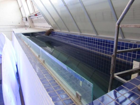 Swimming pool in the loft of Yuan Fen Media Art Space