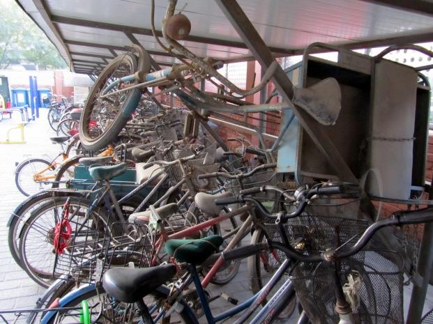 The bike rack where Kate lives