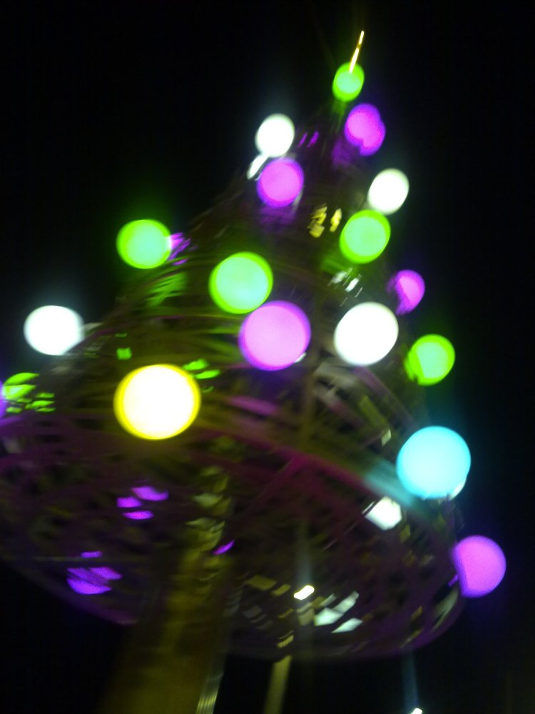 Taylor Square Christmas Tree, Sydney