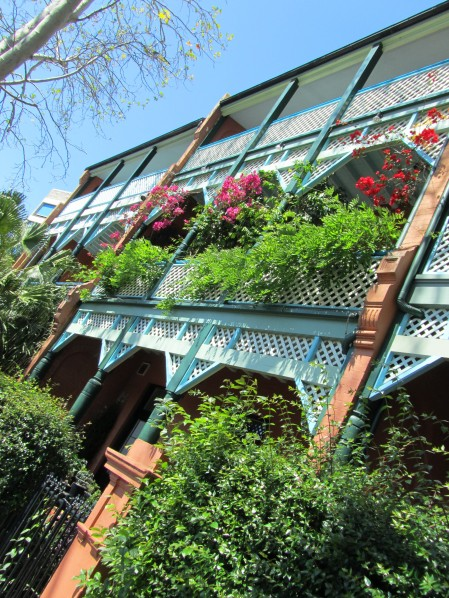 Victoria Street, Kings Cross, Sydney