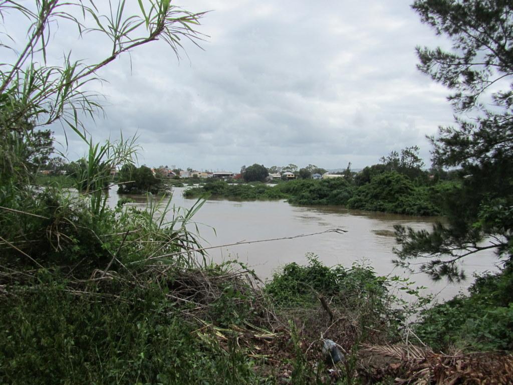 Looking towards the Duck Pond from near the Italo-Australian Club