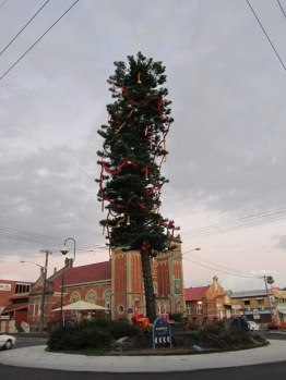 Roundabout Christmas Tree in Lismore