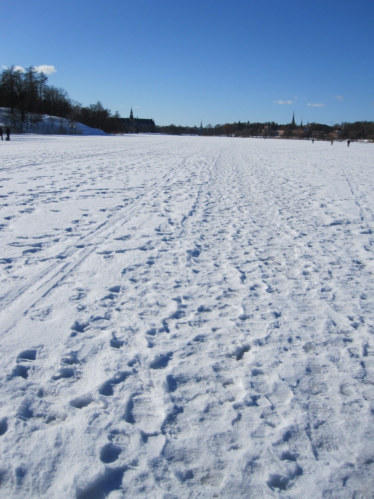 The water frozen over in Stockholm in March 2010