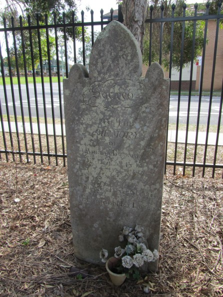 Amelia Burrows grave at St Peters Anglican Church Cordeaux St, Campbelltown
