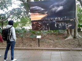 Janie News, Sydney Harbour Storm. - Looking at a stormy sky across Mosman bay towards the Sydney city skyline.
