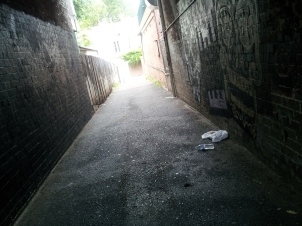 Surry Laneway