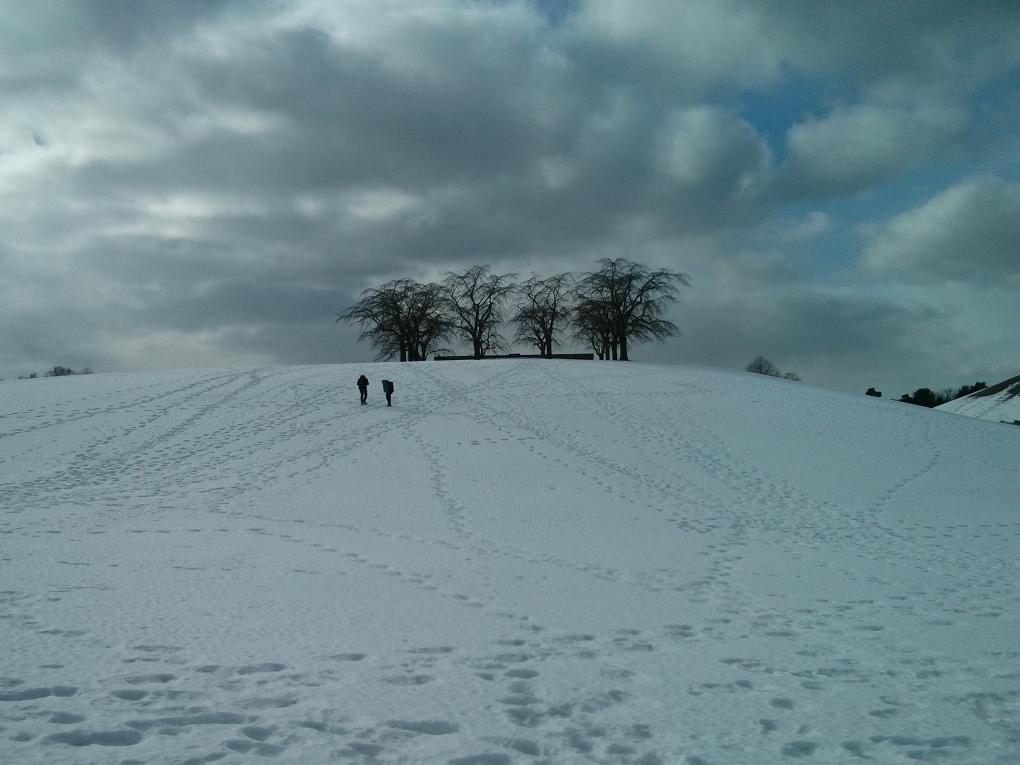 Gosh, I love snow.