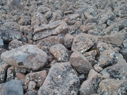 Rocks atop Mount Wellington