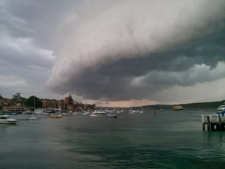 Manly Storm