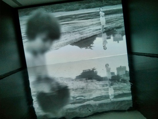 David Claerbout - The Quiet Shore 2011
