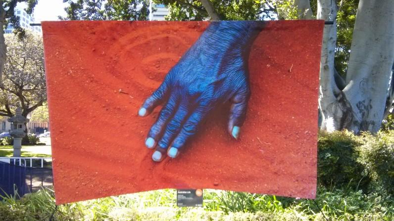 Mutitjulu Dreaming by Jewels Lynch