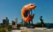 The Big Prawn at Ballina