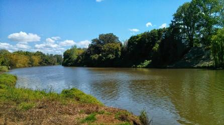 Wilson's River at Lismore