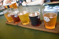 Craft Beer Tour