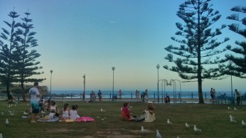 Friday arvo at Coogee