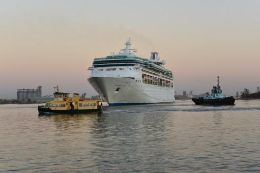 Rhapsody of the Seas in Newcastle Harbour