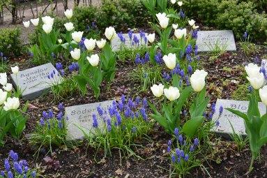 Uppsala Gamla Graveyard