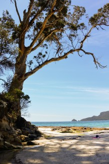 Beach on Bruny Island