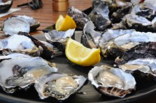 Bruny Island Pacific Oysters