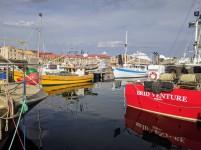 Hobart Waterside