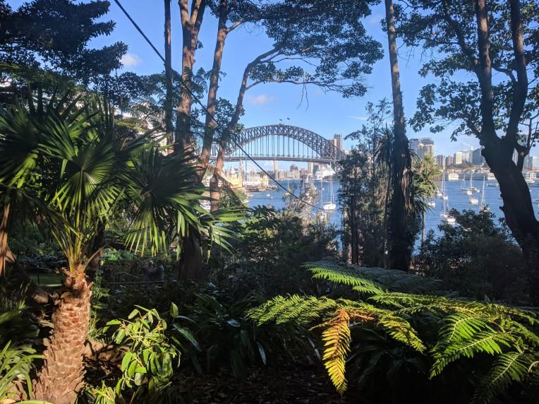 View of the Sydney Harbour Bridge from Wendy's Secret Garden