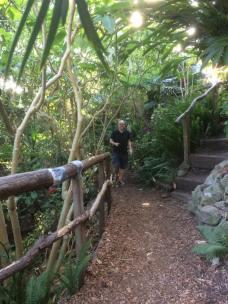 Walking in Wendys Secret Garden